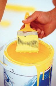 نقاشی ساختمان و رنگ مولتی کالر قیمت مناسب