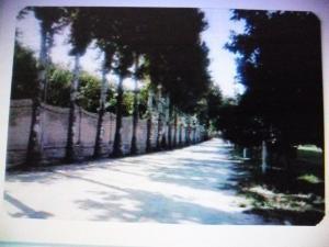 فروش یا معاوضه باغ با ملک در تهران