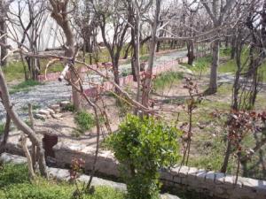 باغ در صفادشت 30000 مترمربع با چهارديواري و دربهاي فلزي