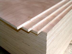 Plywood پلی وود سه لایی روسی