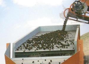 پوکه معدنی قیمت پوکه معدنی -ساختمانی قروه  09183776025