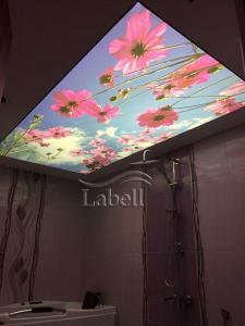 سقف کشسان لیبل LABELL - اعطای نمایندگی سقف کاذب (کشسان)