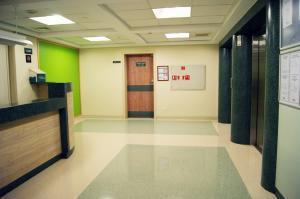 کفپوش بیمارستانی(آنتی باکتریال - کانداکتیو ) چمن و ورزشی