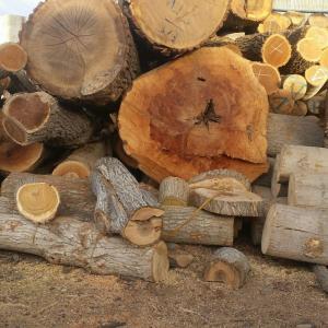 مرکز فروش انواع چوب