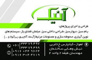 عرضه کننده چوب ترمو وود در استان خوزستان (ترمو وود آنیک)