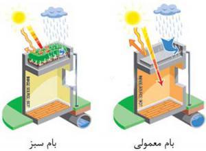 باغ بام ، بام سبز ، پارکینگ سبز (تولیدکننده و مجری)